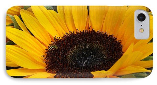 My Sunshine IPhone Case