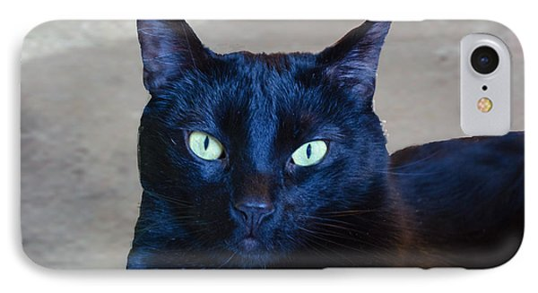 Mysterious Black Cat Phone Case by Luther Fine Art
