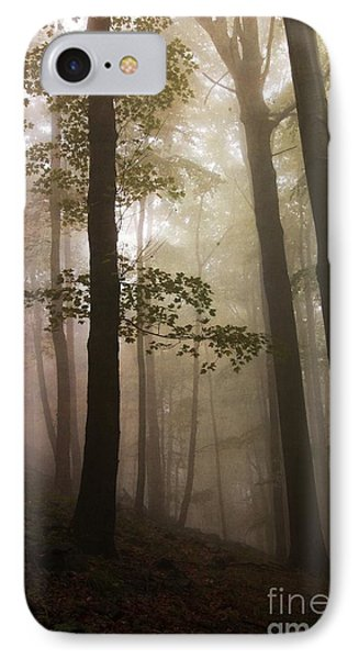 Mysterious Forest 1 IPhone Case