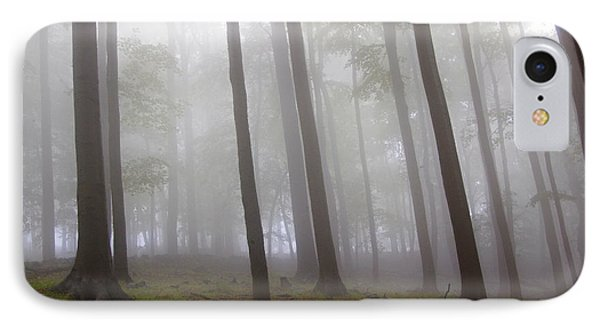 Mysterious Forest 4 IPhone Case