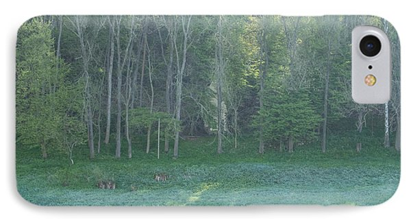 Mysterious Elbe Woods IPhone Case