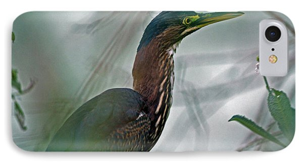 Mystery In The Marsh Phone Case by Inspired Nature Photography Fine Art Photography