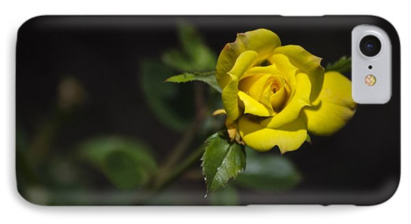 Mystic Yellow Rose Phone Case by Christina Rollo