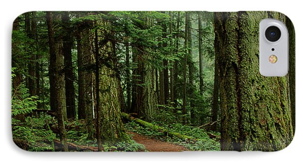 Mystical Path IPhone Case by Randy Hall