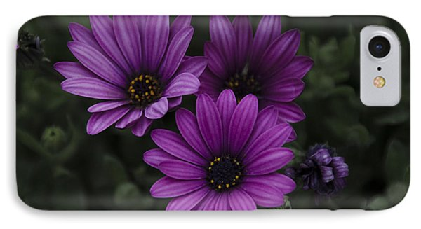 Mystical Purple Phone Case by Penny Lisowski