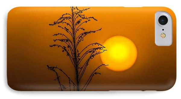 Mystical Sunset IPhone Case by Shelby  Young