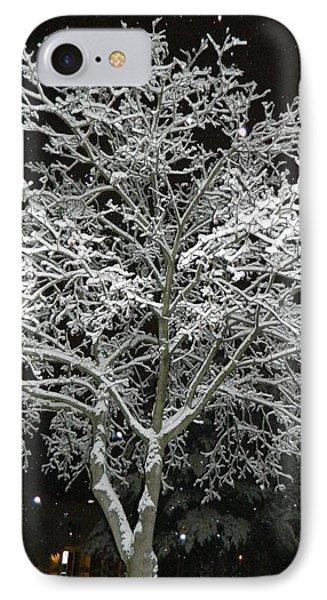Mystical Winter Beauty IPhone Case