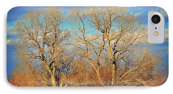 Naked Branches Phone Case by Marty Koch