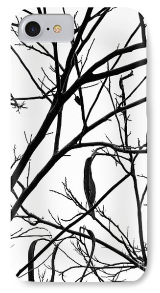 Naked IPhone Case by Jim Rossol