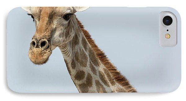Namibia, Etosha National Park, Klein IPhone Case by Jaynes Gallery