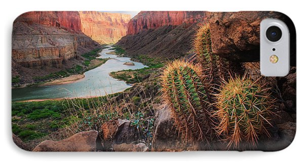 Landscapes iPhone 7 Case - Nankoweap Cactus by Inge Johnsson