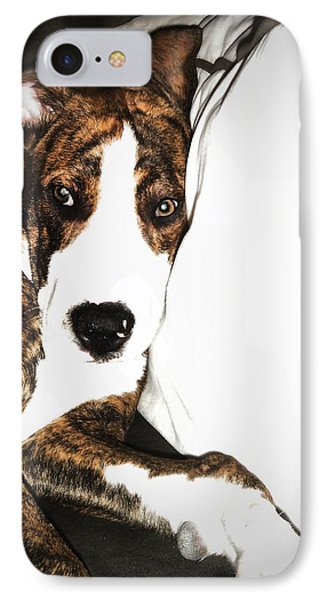 IPhone Case featuring the photograph Nap Time by Robert McCubbin
