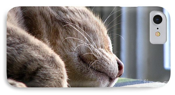 IPhone Case featuring the photograph Nap Time by Sandra Bauser Digital Art