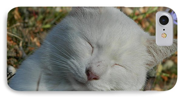 IPhone Case featuring the photograph Napping Barn Cat by Kathy Barney