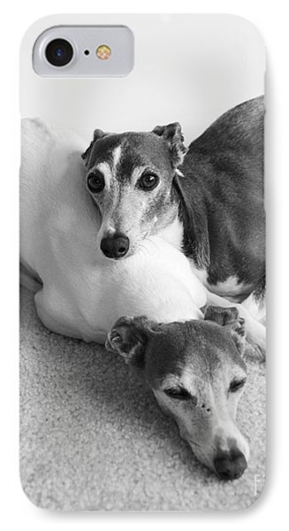 Napping Greyhounds Phone Case by Kate Sumners