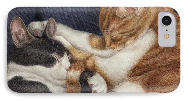 Naptime IPhone Case by Pat Erickson