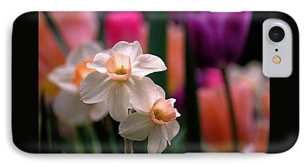 Narcissus And Tulips IPhone Case by Rona Black