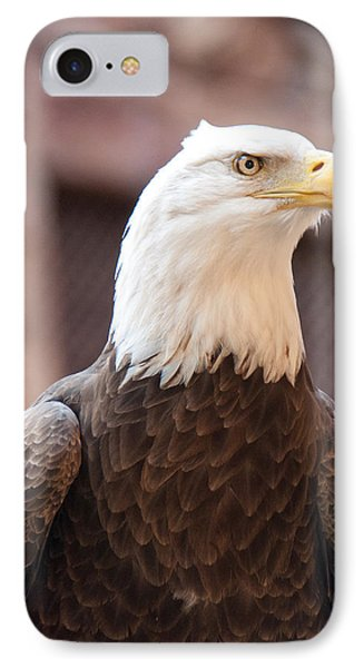 IPhone Case featuring the photograph American Bald Eagle by John Black