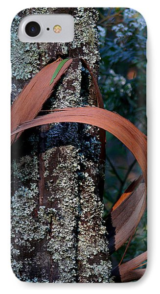 IPhone Case featuring the photograph Natural Bands 1 by Evelyn Tambour