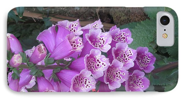 IPhone Case featuring the photograph Natural Bouquet Bunch Of Spiritul Purple Flowers by Navin Joshi