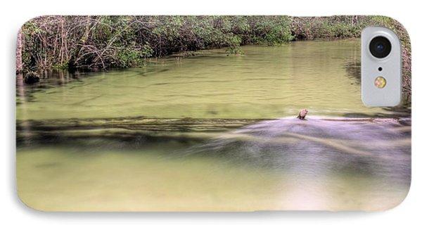 Natural Florida IPhone Case