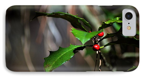 IPhone Case featuring the photograph Natural Holly Decor by Bill Swartwout