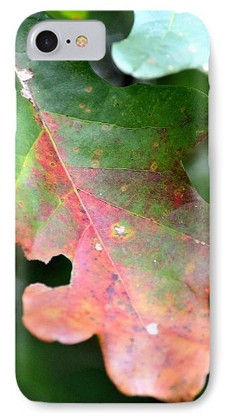 Natural Oak Leaf Abstract IPhone Case by Maria Urso