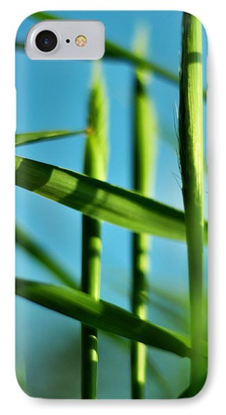 Natural Order IPhone Case by Rebecca Sherman