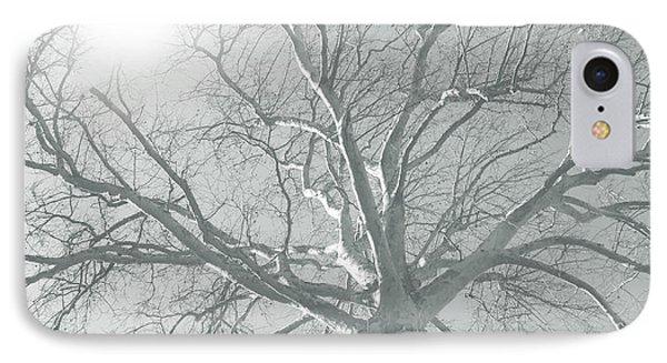 nature - art - Winter Sun  Phone Case by Ann Powell