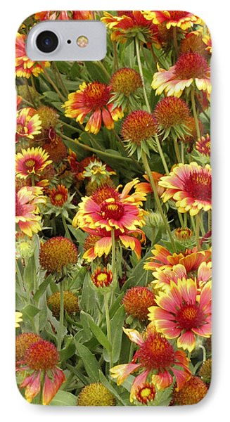 nature - flowers -Blanket Flowers Six -photography Phone Case by Ann Powell