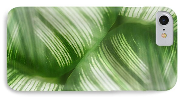 Nature Leaves Abstract In Green 2 Phone Case by Natalie Kinnear