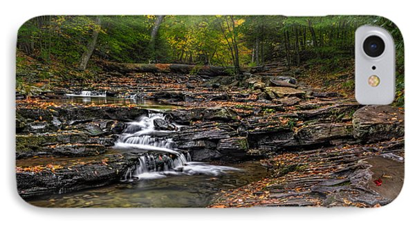 Nature Trail And Streams IPhone Case