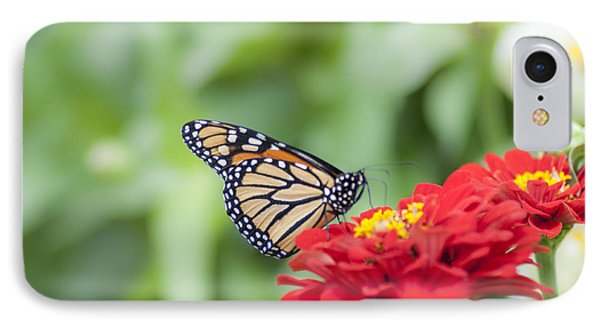 Natures Beauty - The Buterfly IPhone Case