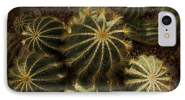 Nature's Fireworks IPhone Case by Kathleen Scanlan