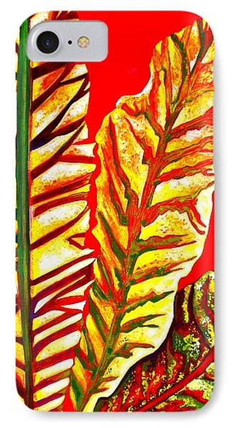 Nature's Gifts IPhone Case by Julie  Hoyle