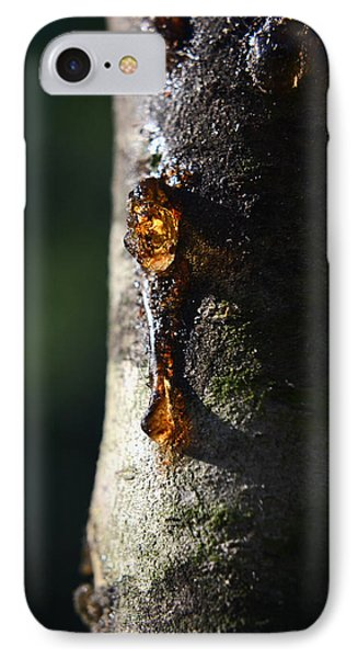 Natures Gold IPhone Case