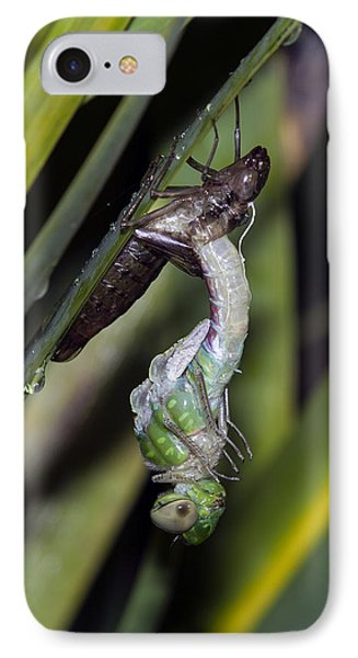 Natures Miracle 2 IPhone Case by David Lester