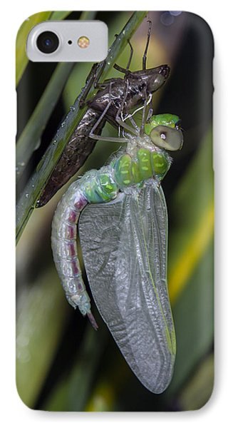 Natures Miracle 3 IPhone Case by David Lester