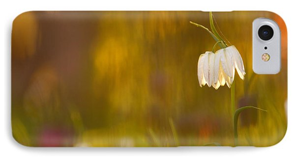 Natures Painting - Snakes Head Fritillaries IPhone Case
