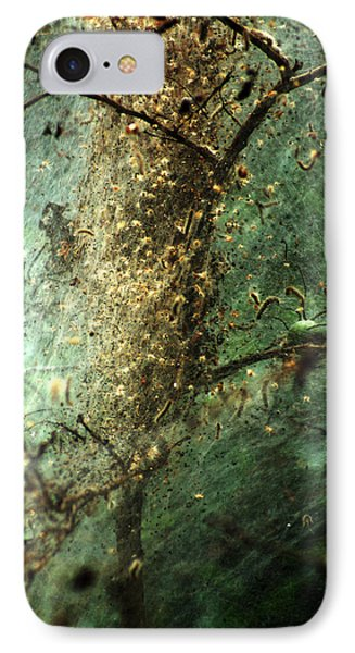 Natures Past Captured In A Web IPhone Case