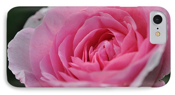 IPhone Case featuring the photograph Nature's Pink by Sabine Edrissi