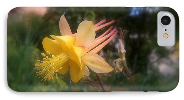 Natures Star IPhone Case