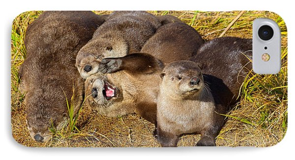 IPhone Case featuring the photograph Naughty Otters by Aaron Whittemore