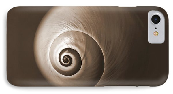 Nautilus In Sepia IPhone Case by Deborah Smith