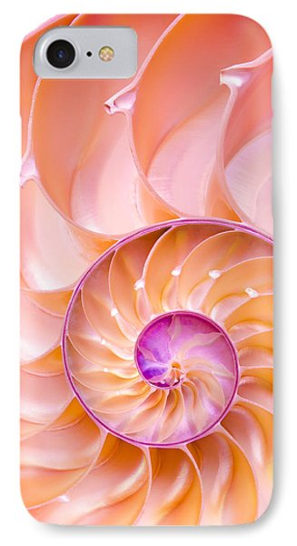 Nautilus Shell Detail IPhone Case by Jim Hughes