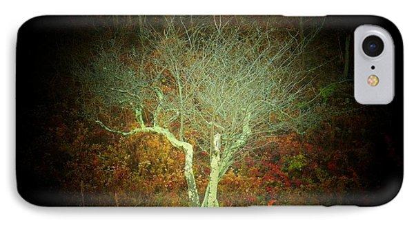 Neat Tree IPhone Case by Joyce Kimble Smith