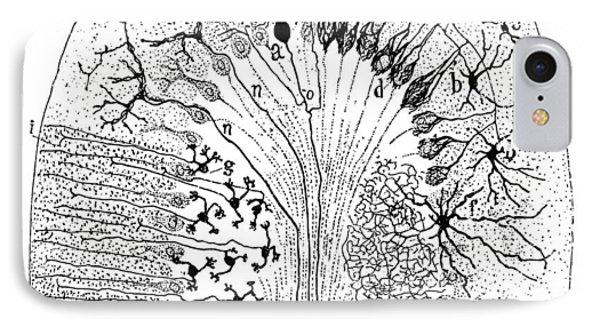 Nerve Cells, 1894 Phone Case by Granger