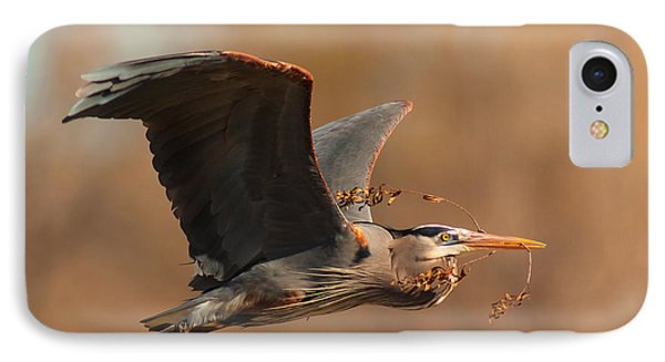 Nest-building Great Blue IPhone Case by Robert Frederick