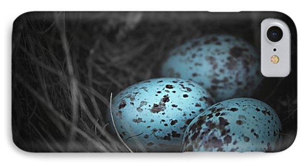 Nest Of 3  IPhone Case by Trish Mistric
