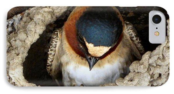 Nest Sweet Nest IPhone Case by Audrey Van Tassell